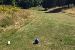 golf-10-big