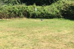 golf-20-big